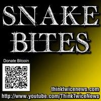 Snakebites icon